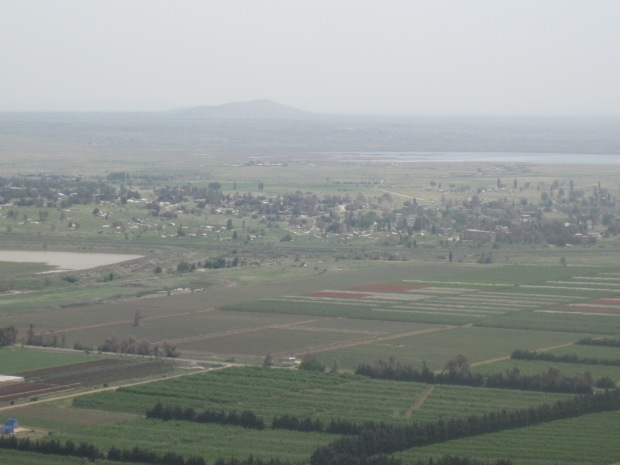 The town of Quneitra.  The hedges in the foreground are in Israel and the town of Quneitra amongst the scattered trees are behind it.  (taken by me April 25, 2014)